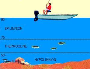 järvien lämpötila